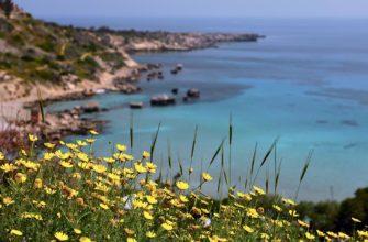 kipr ostrov mechty