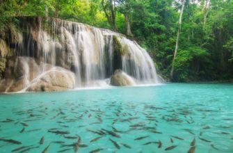 ekskursii v tajlande 2021 ceny foto opisanie gde kupit